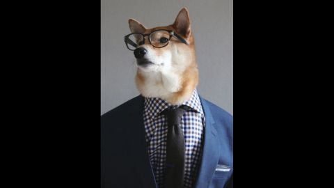 Gingham shirt, navy suit, tortoiseshell glasses, textured tie, solid pocket square