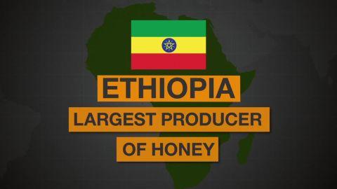 ethiopia honey spc africa view_00001330.jpg