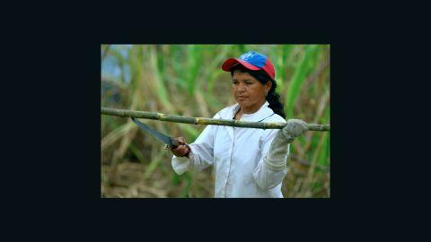 A Fairtrade sugar cane farmer in South America.