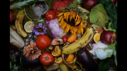 """All the images in Steven Duede's """"Evanescence"""" photo series are from his compost bin in Boston. Photographs from the series have been featured at the Griffin Museum of Photography and the Danforth Museum of Art, and they are currently on display at The Fence in Boston."""