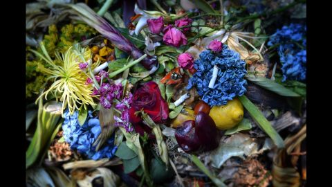 Duede, a lifelong artist and painter, was drawn to the rich colors and textures in the compost bin.