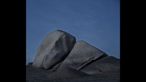"""This image evokes a fusion between nature and humanity,"" Sanchez Renero said."