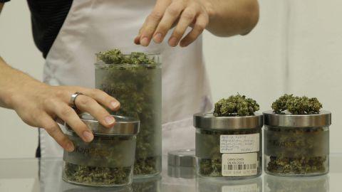 An employee at Kaya Shack, a Portland, Oregon, medical marijuana dispensary, showcases three types of marijuana sold at the shop on June 26, 2015. Oregon legalized recreational marijuana use on July 1, 2015.