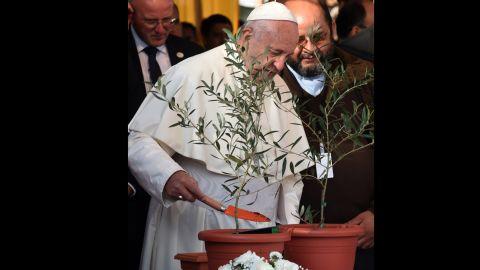Pope Francis plants an olive tree in Asuncion's Banado Norte neighborhood on July 12.