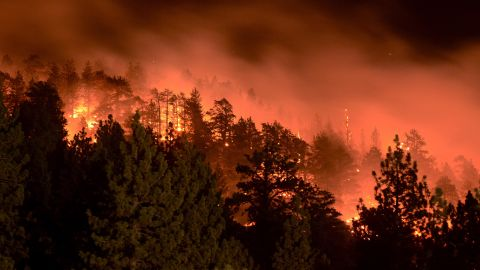 Flames from the Pines Fire burn on Saturday, July 18, in Wrightwood, California. The blaze was burning near Mount San Antonio, which is also called Mount Baldy for its snow-capped summit that's highly visible in Los Angeles.