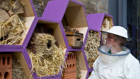 Befriend local beekeepers who practice safe hive care.