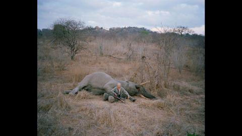 Untitled hunter with trophy elephant, Zimbabwe.