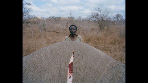 Untitled No. 3, Zimbabwe.