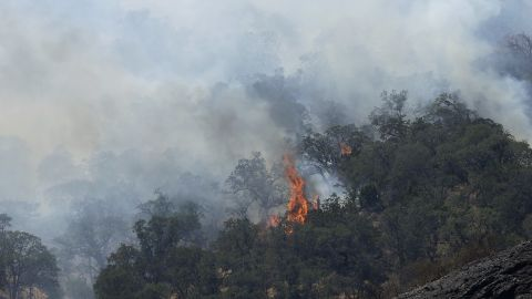 Fires burn on a hill in Livermore, Calif., Thursday, Aug. 20.