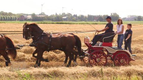 spc cnn equestrian european championships b_00043416.jpg