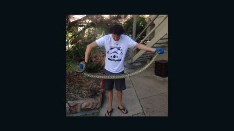 The second nearly 8 foot python snake catcher Elliot Budd removed from a woman's toilet.