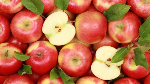 Apples are the go-to fruit among youth ages 2 to 19, according to a study published in Pediatrics. Apples account for 18.9% of fruit intake among that age group.