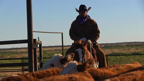 It is the largest single-fenced ranch in the United States and stretches across six different counties.