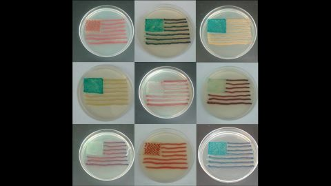 This artist used a strain of E. coli to create this Andy Warhol inspired petri art.
