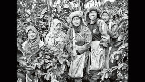 Coffee pickers are photographed on a family plantation on Indonesia's Sumatra Island in 2014.