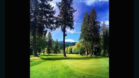 """The combination of vivid greens and browns in <a href=""""https://instagram.com/c4rtp4th/"""" target=""""_blank"""" target=""""_blank"""">@c4rtp4th</a>'s submission is synonymous with the Pacific Northwest. """"The four towering pine trees will reject any garbage you throw at the green. Love a golf hole that makes you think and work for a good score,"""" he said."""
