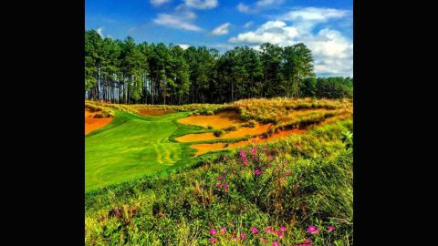 """<a href=""""https://instagram.com/realstewartkick/"""" target=""""_blank"""" target=""""_blank"""">@realstewartkick</a> captures a stark contrast in colors from the wild flowers in the foreground, to the green and blue in the background on the 18th hole. Not a bad way to end a round."""