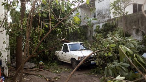A truck sits covered in tree branches on October 24 in Cuastecomates, Mexico.
