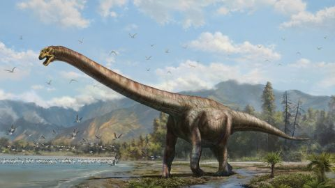 """Paleontologists discovered a 50-ft """"dragon"""" dinosaur species in 2006 in southwestern China's Chongqing. The species is thought to have roamed the earth 160 million years ago in the Late Jurassic period."""