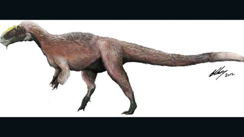 """At nine meters long and weighing more than 1.4 tonnes, it's the largest feathered animal known to have lived. Named by Xu Xing in 2012, it's been <a href=""""http://www.smithsonianmag.com/science-nature/scientists-discover-a-gigantic-feathered-tyrannosaur-172633563/"""" target=""""_blank"""" target=""""_blank"""">described as a feathered Tyrannosaur.</a>"""