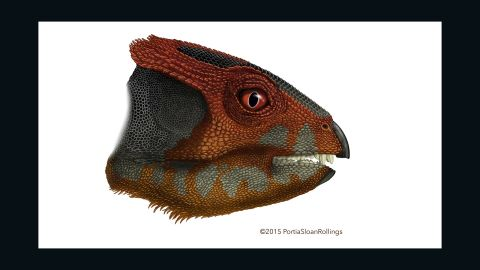 """The <a href=""""http://cnn.com/2015/12/11/asia/china-new-dinosaur-fossils/"""">discovery of the hualianceratops</a>, from the same family of dinosaurs as the triceratops, was announced December 9 2015.  Its fossils were discovered in the Gobi Desert, western China."""