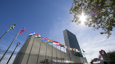 International flags fly in front of the United Nations headquarters on September 24, 2015, before the start of the 70th General Assembly meeting. AFP PHOTO/DOMINICK REUTER        (Photo credit should read DOMINICK REUTER/AFP/Getty Images)