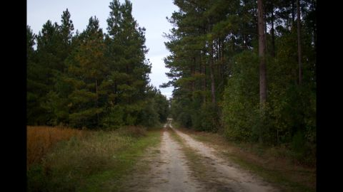 This road leads to Frampton's childhood house in Varnville, South Carolina.