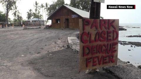 hawaii dengue fever big island outbreak pkg_00000515.jpg