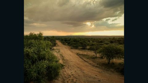 As quirky and modern as his work is, Pon isn't scared of posting a traditional sunset or two. This one was taken at Mabalingwe Game Reserve, Rooiberg, South Africa.