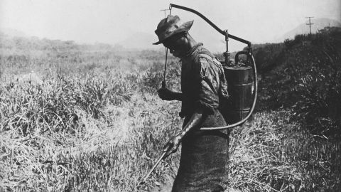 Mosquitoes and malaria were one of the biggest obstacles to building the Panama Canal. Here, a man sprays insecticides to kill mosquitoes around 1913.