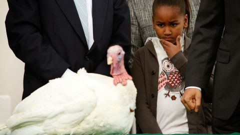 """Sasha looks at a turkey named Courage during a Thanksgiving tradition to """"pardon"""" a turkey in November 2009."""