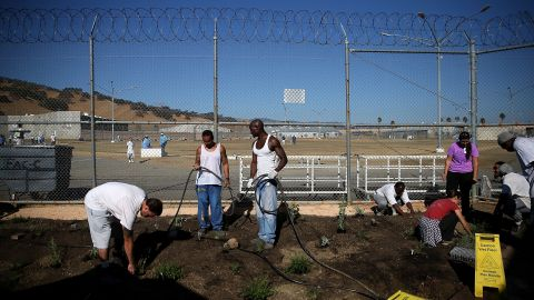 VACAVILLE, CA - OCTOBER 19:  A California State Prison-Solano inmates install a drought-tolerant garden in the prison yard on October 19, 2015 in Vacaville, California.  Inmates at California State Prison-Solano installed a drought-tolerant garden as part of the Insight Garden program that teaches inmates environmental and gardening skills. The garden will be watered using reclaimed water from the prison's kitchen.  (Photo by Justin Sullivan/Getty Images)