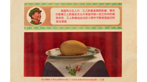 """To bring the students under control, Mao had founded """"Worker-Peasant Mao Zedong Thought Propaganda Groups"""" and ordered the mangoes to be given to one of these groups at Tsinghua University."""