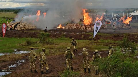 Critics worried it would send the price of ivory in the black market up but conservationist Richard Leakey told the crowd at the burn ceremony that prior burnings have led to a dramatic drop in prices.