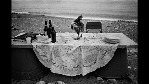 """The picture from 1986 is one of Battaglia's favorites. """"I went to the seaside to shoot something, and I saw this very strange table. Someone had organized a party on the seaside and I don't know why, but all that was left was this hen. It's poetic. I am looking for poetry in life. That's all I need."""""""
