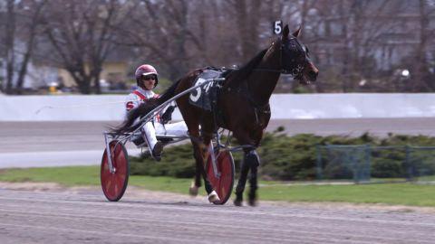 How to call a Horse Race ncc orig orig_00010525.jpg
