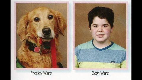 Presley, a service dog, appears alongside her companion, seventh grader Seph Ware, in the yearbook.