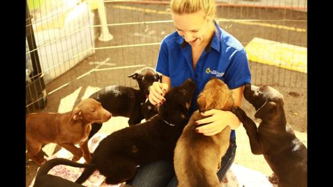 Shannon greeting a litter of rambunctious puppies at the San Diego Humane Society (2010)