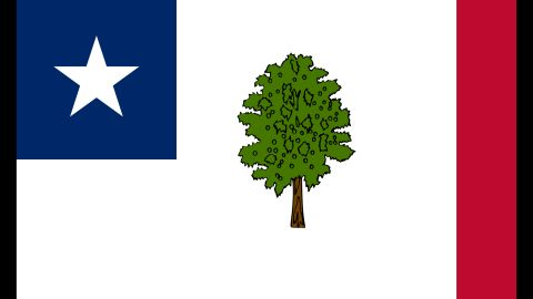 The Magnolia flag was Missippi's state flag from 1891 to 1894.