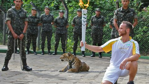 An athlete holds the Olympic Torch by a jaguar --symbol of Amazonia-- during a ceremony in Manaus, northern Brazil, on June 20, 2016.   The jaguar, who was named Juma and lived in the local zoo, had to be shot dead by soldiers shortly after the ceremony when he escaped and attacked a veterinarian despite having been hit four times with tranquilizing darts. / AFP PHOTO / Diario do Amazonas / Jair AraujoJAIR ARAUJO/AFP/Getty Images