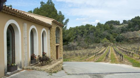 French vineyards have become popular with mainland Chinese buyers.