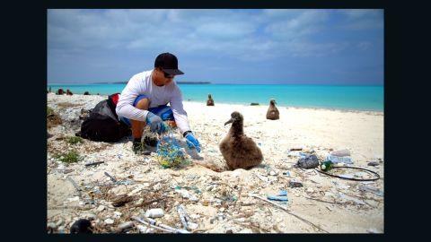 """There are different ideas about how to address the crisis. The <a href=""""http://www.noaa.gov"""" target=""""_blank"""" target=""""_blank"""">U.S. National and Atmospheric Association</a> favors beach cleaning and public education at local level, combined with challenging policymakers and plastic producers to promote conservation."""