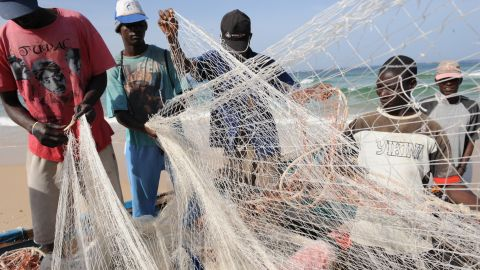 Senegal's economy is based on fishing, mining and agriculture. Its economy is expected to expand by 7% in 2018.