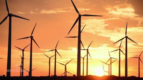 eco solutions renewables pkg spc_00002318.jpg