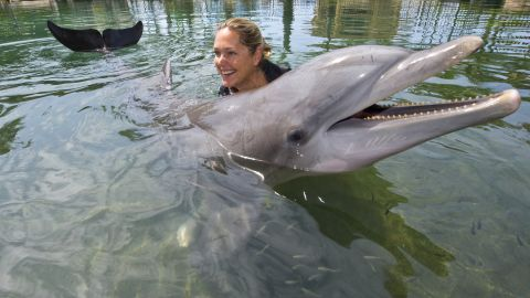 Swimming with dolphins has been one of the attractions at Honolulu's Kahala Hotel.