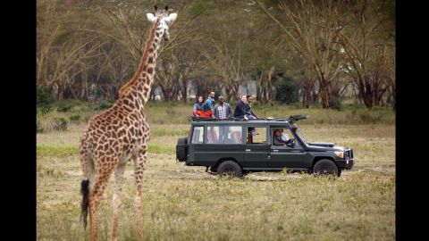 Zuckerberg and friends watch a giraffe from the safety of safari truck.