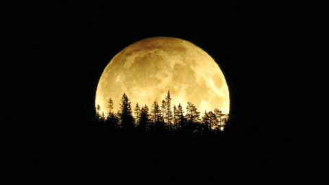 Lisbett Lindstad took this photo of the harvest moon early Saturday morning in Vikersund, Norway.