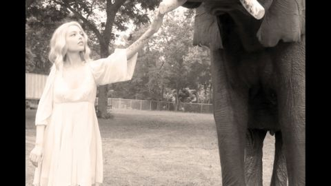 Elephants are Kat's favorite animal and Cion arranged for her to meet them as one of her bucket list items.
