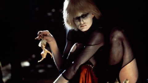 """In the film """"Blade Runner,"""" genetically engineered """"replicants"""" are used for dangerous work off-planet. They are designed to look like humans, and some of them, seeking lives of their own, go rogue. Pris (Daryl Hannah) is considered a """"basic pleasure model."""""""