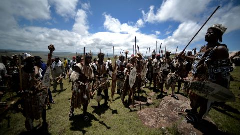 """A feature of marital affairs for many Bantu-speaking tribes in South Africa, Zimbabwe and Swaziland, <em>lobola</em> is practiced by, among others,  Zulus (pictured). <em>Lobola</em> is also referred to as """"bridalwealth"""", with the prospective groom's family negotiating with the bride's for her hand in marriage. The dowry comes in many forms, including money, but some choose cattle. There were <a href=""""http://articles.latimes.com/1998/jul/19/news/mn-5280"""" target=""""_blank"""" target=""""_blank"""">reports in 1998</a> that Nelson Mandela (of Thembu lineage) paid the marital <em>lobola</em> of 60 cows to the family of new wife Graca Machel.<br /><br />""""It's the cause of much conflict,"""" says Lewis, """"because in order for a man to get married he must provide often quite a substantial head of cattle, and so he's in indentured labor to his father until the herd he's caring for is big enough."""" In societies that are cattle based, men tend to marry in their mid-forties, he adds, explaining that """"there's always a backlog of women who are available but unable to marry"""" because men of a similar age have not yet raised the required bridalwealth."""